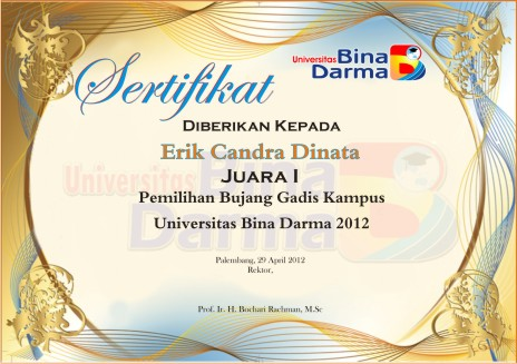 sertifikatboey3